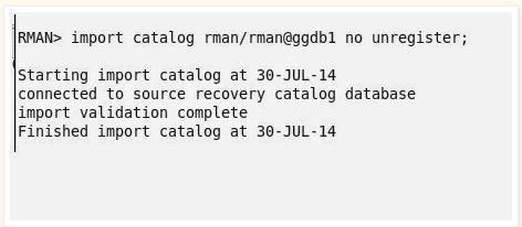 Rman_Catalog6